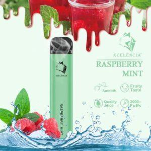 Gunnpod 2000 puffs - Raspberry Mint