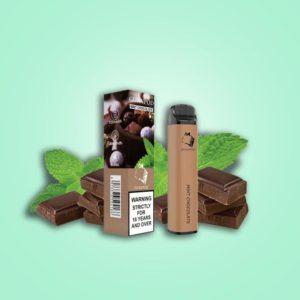 Gunnpod 2000 puffs - Mint Chocolate